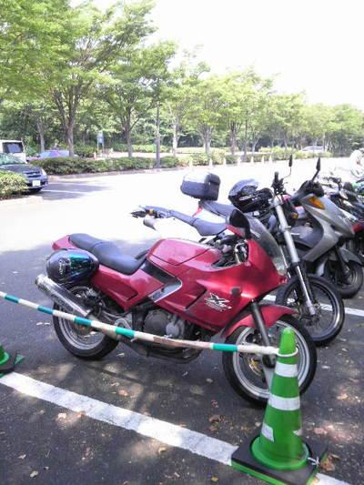潮風公園駐車場